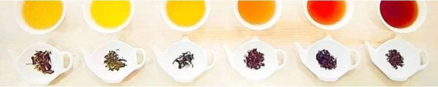Los Tipos de Té